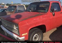 1981 Chevrolet  Regular Cab 2WD